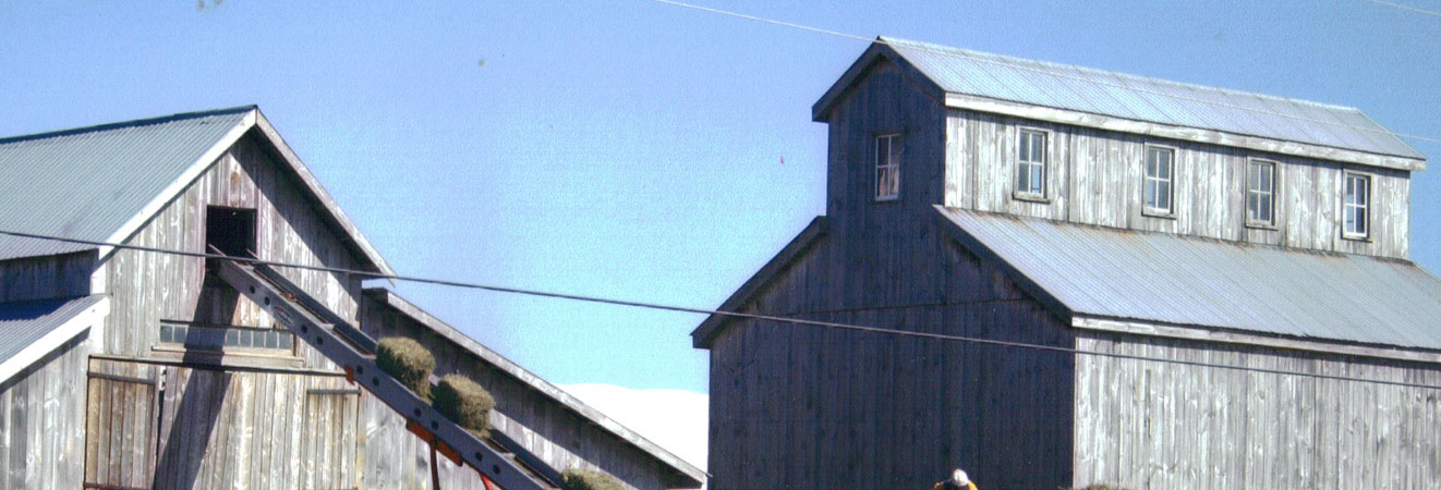 Butterworks Farm Organic Grain