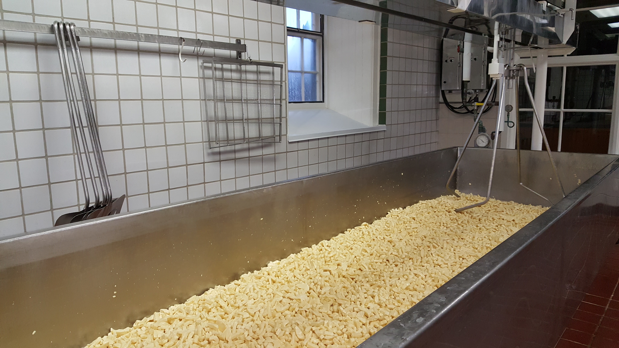 Shelburne Farms Cheese Making